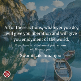 If you have no attachment your actions will liberate you. ~Swami Lakshmanjoo