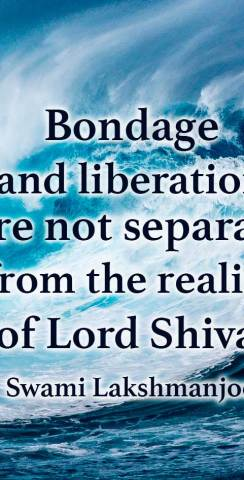 Bondage and Liberation and not separate from the reality of Lord Shiva. ~Swami Lakshmanjoo