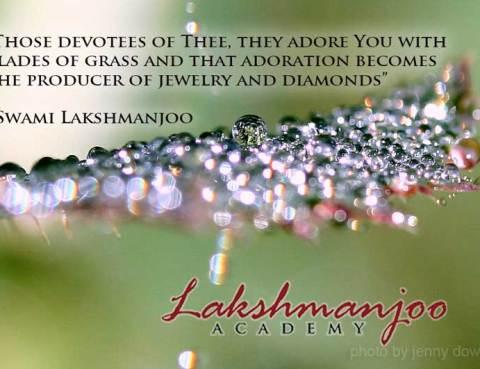 Swami Lakshmanjoo, Kashmir Shaivism, quotes