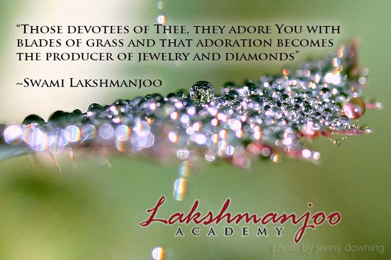 quotes by Swami Lakshmanjoo