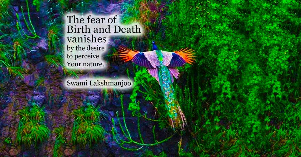 The fear of birth and death vanishes by the desire to perceive Your nature. ~Swami Lakshmanjoo