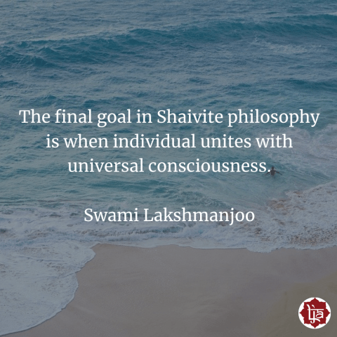 The final goal in Shaivite philosophy is when individual unites with universal consciousness. ~Swami Lakshmanjoo