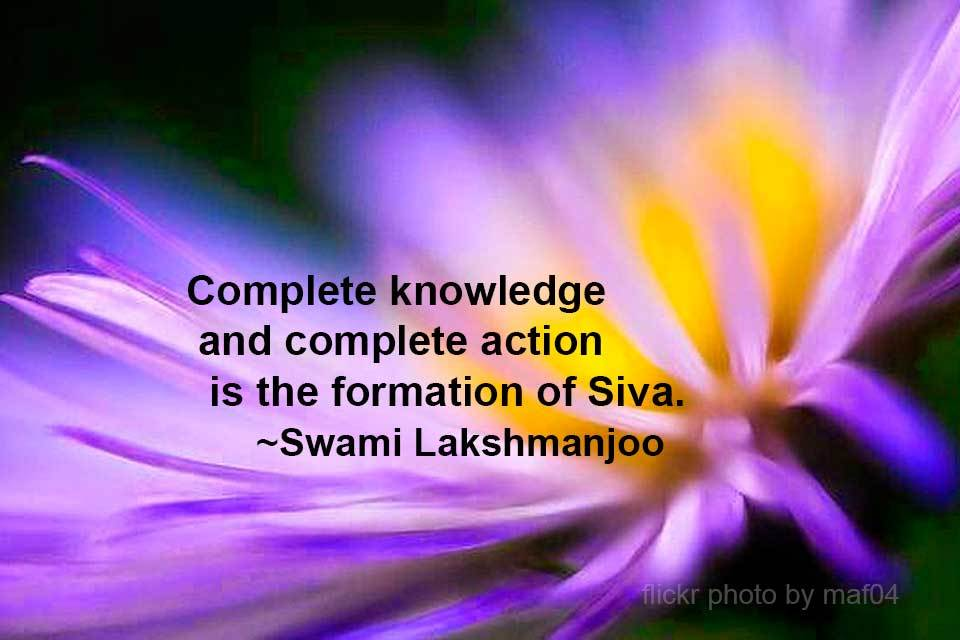"""""""Complete knowledge and complete action is the formation of Śiva"""" ~Swami Lakshmanjoo"""