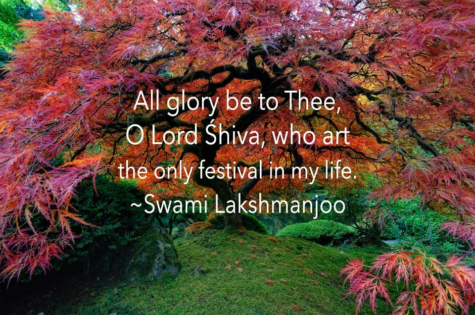 All glory be to Thee, O Lord Śhiva, who art the only festival in my life. ~Swami Lakshmanjoo
