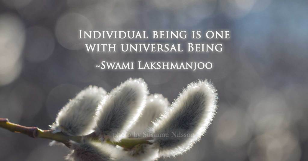 Individual being is one with universal Being ~Swami Lakshmanjoo