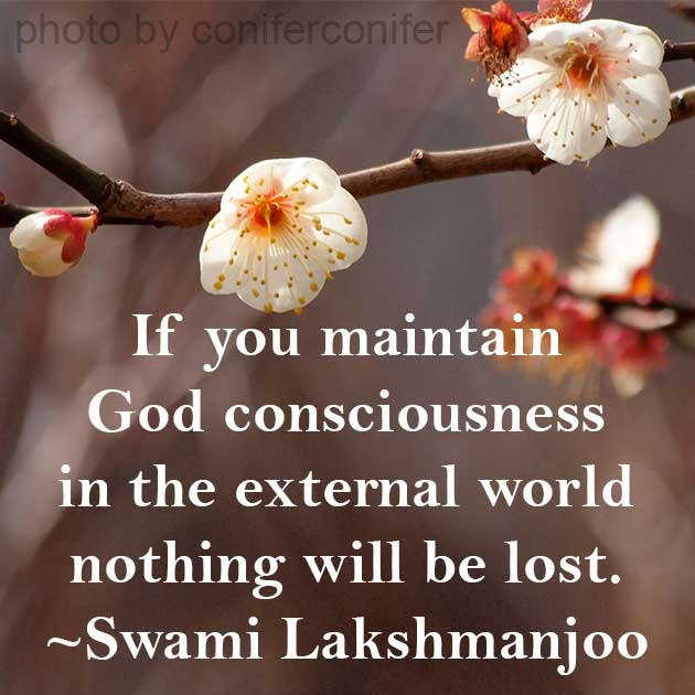 If you maintain God consciousness in external world nothing will be lost. ~Swami Lakshmanjoo