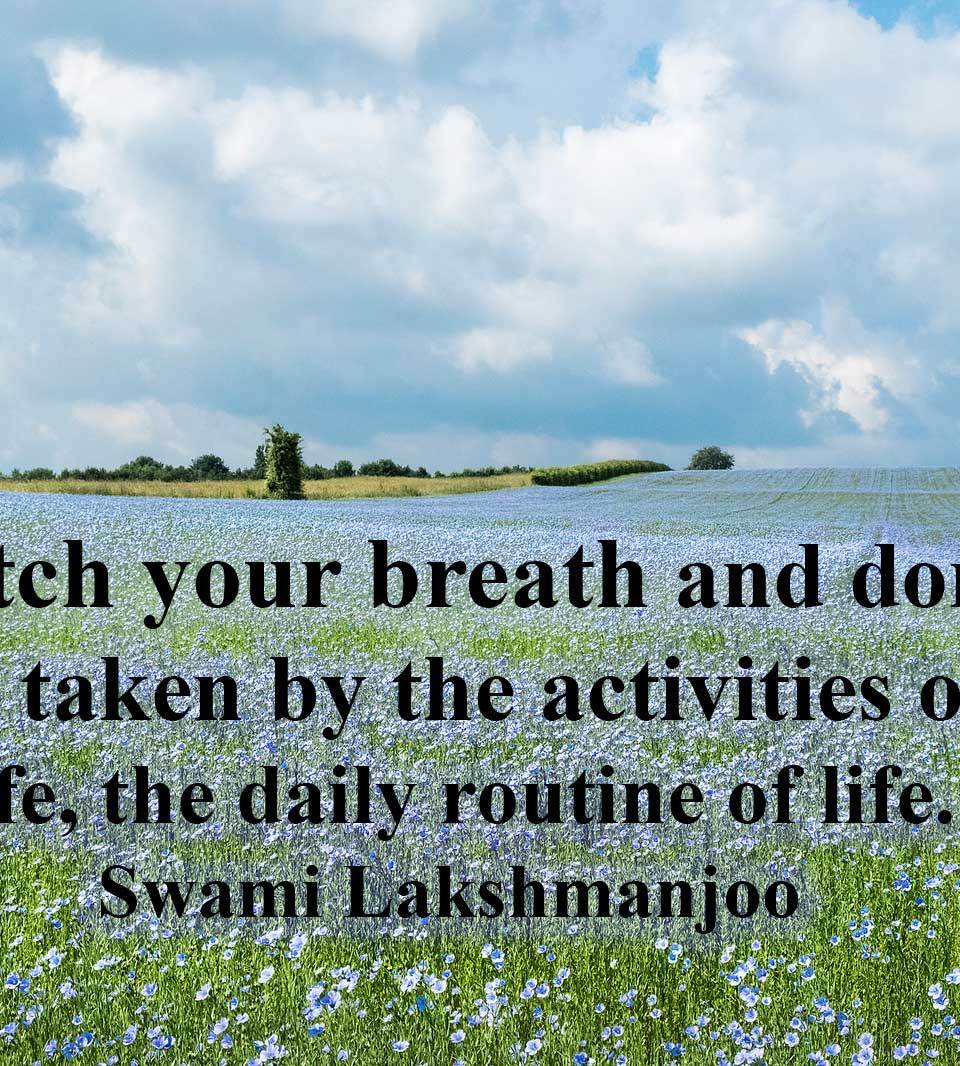 In sensual pleasures, what should you do? (in Kashmir Shaivism) ~Swami Lakshmanjoo