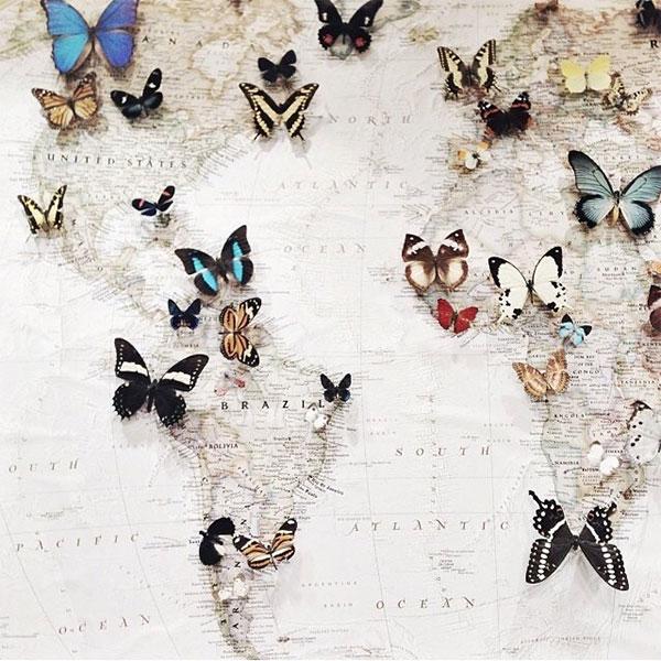 la la loving map with butterflies