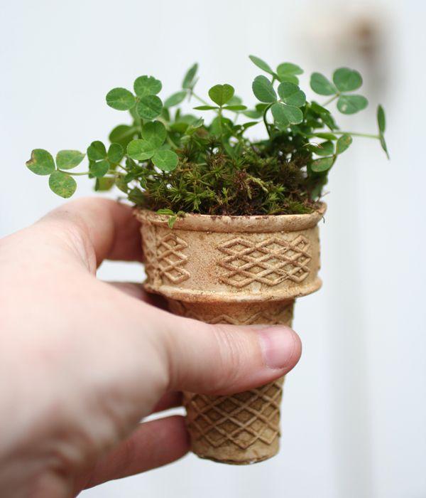 seeds in ice cream cone