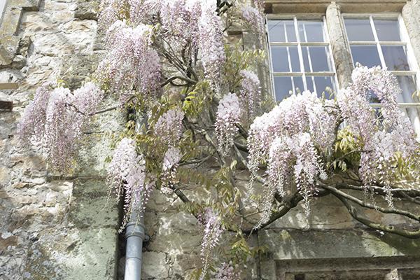 la-la-lovely-english-garden-3