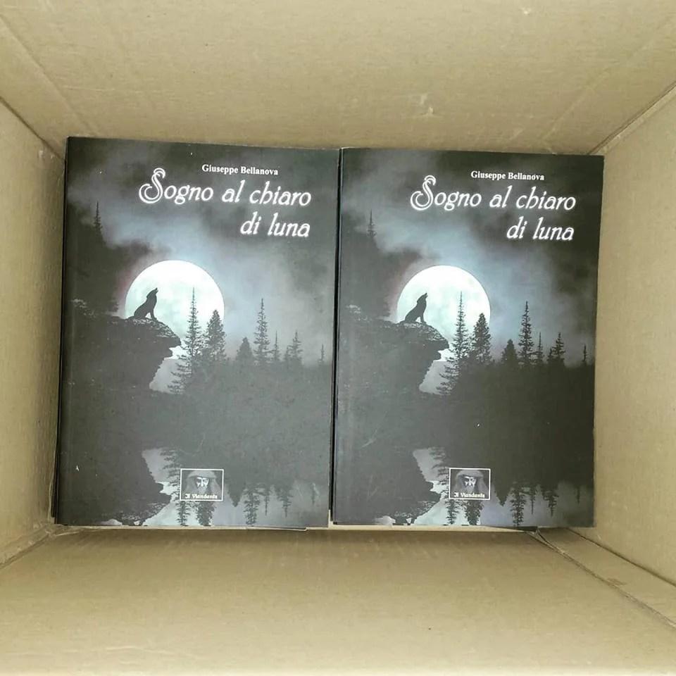 SEGNALAZIONE: Sogno al chiaro di Luna (Giuseppe Bellanova)