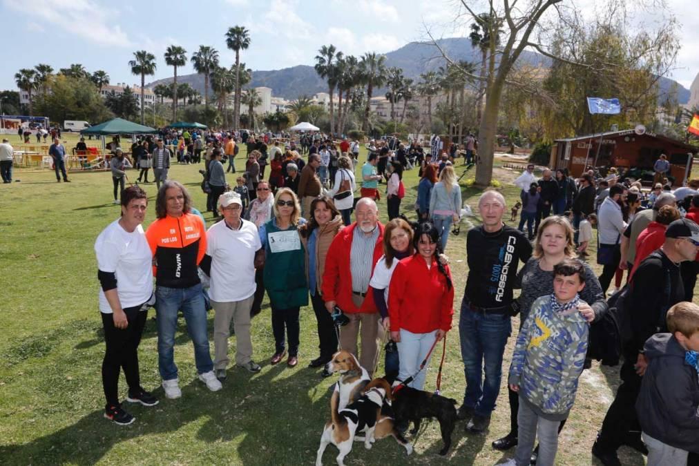 Cerca de un millar de personas asisten al segundo Festival Canino y de la Adopción de l'Alfàs del Pi
