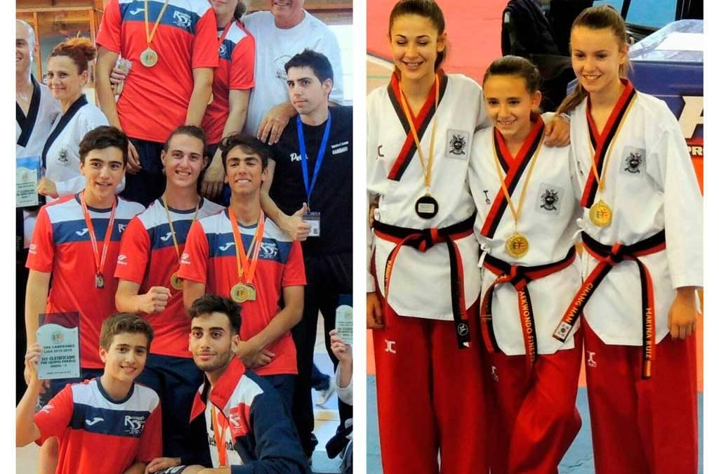 Cinco  Oros, tres platas y un Bronce para los alfasinos que han participado en la Copa  Campeones  de Takewondo 2016 de la Comunidad Valenciana.