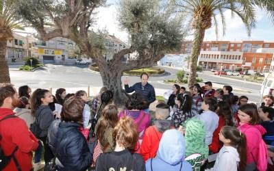 Medio centenar de alumnos del CEIP Veles e Vents visitan los árboles singulares del casco urbano