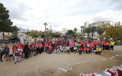 Más de 600 kilos de alimentos se recogen en el IV Canicross  Solidario en l'Alfàs
