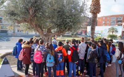 Estudiantes del CEIP Santísimo Cristo visitan los árboles singulares del casco urbano