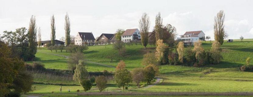 Schlatthof - Schlatthof