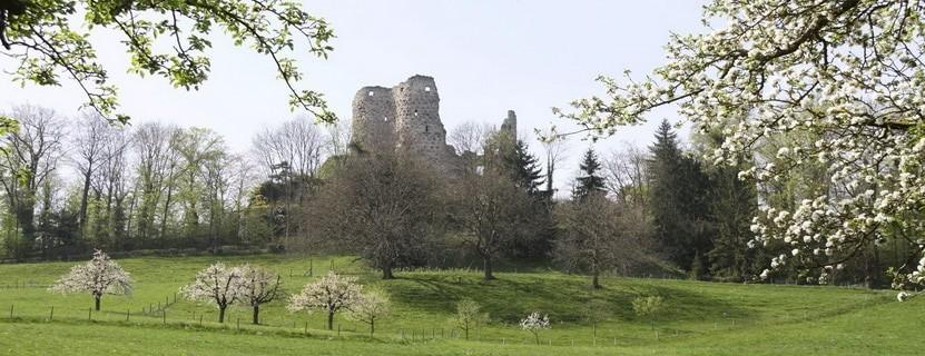 Ruine Pfeffingen – Blattenpass