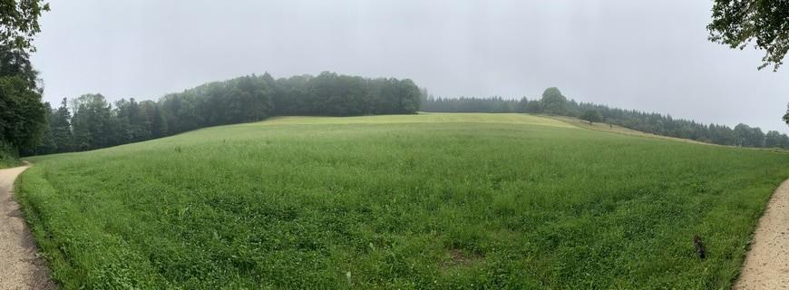 Spaziergang #1 – Chlini und Grossi Weid, Pfeffingen
