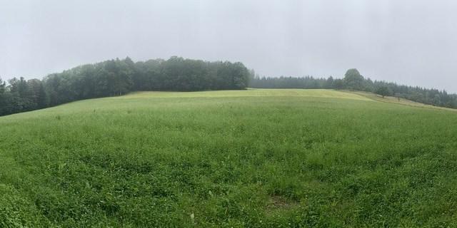 Spaziergang #1 - Chlini und Grossi Weid, Pfeffingen