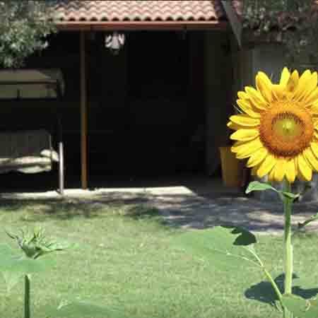 www.lalocride.it dove dormire nella locride case in affitto