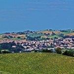Il Comune di Serra de' Conti perde due pilastri