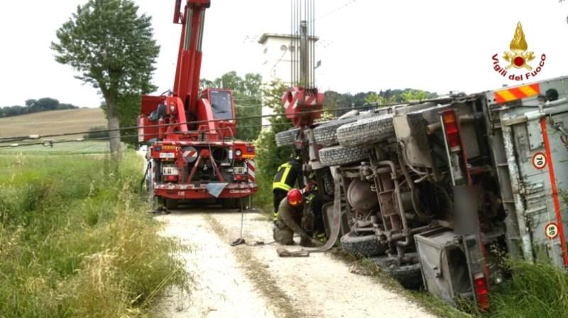 A Senigallia camion carico di maiali finisce in un fossato