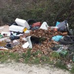 """SENIGALLIA / Il sindaco fa pulire la """"discarica"""" segnalata da Paradisi ma lungo le strade della città sono tanti i rifiuti abbandonati"""