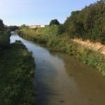 Continua il percorso del Contratto di fiume del bacino MisaNevola