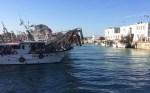 Con la Giornata Fai d'Autunno domenica si va alla scoperta della Senigallia marinara e dei luoghi della Fiera Levantina