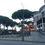 """""""Al Laboratorio Analisi dell'Ospedale di Senigallia la nuova organizzazione ha solo aggravato i problemi"""""""