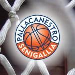 Esordio vincente per la Pallacanestro Senigallia, sconfitto il Porto Sant'Elpidio