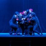 A Serra San Quirico è arrivato il giorno del gran finale della 37^ Rassegna Nazionale di Teatro della Scuola