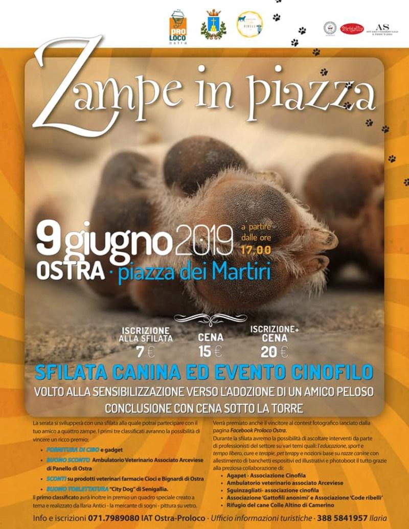 Zampe in piazza - Ostra 2019 - locandina