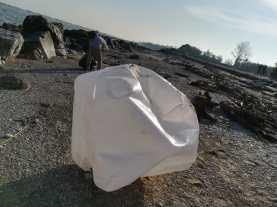 FANO puliamo fano raccolta rifiuti spiaggia2019-12-08 (7)