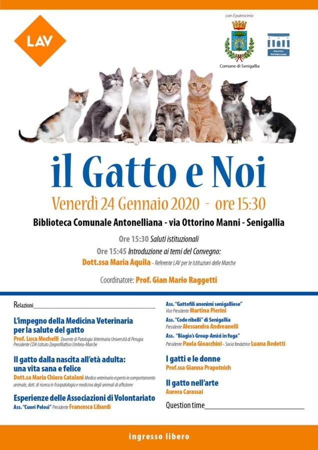 il gatto e noi