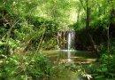 Il sentiero del granchio nero di Castelplanio sta diventando una grande attrazione