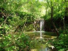 CASTELPLANIO sentiero granchio nero natura2020-06-06 (1)