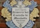 Ogni mercoledì (luglio e agosto) apre l'Armeria del Castello di Mondolfo