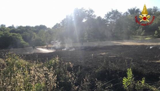 ROSORA incendio sterpaglie vdf2020-06-02 (1)