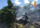 Sterpaglie in fiamme lungo una scarpata a Monte San Vito