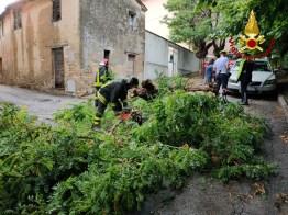 ANCONA maltempo Gallignano2020-08-04 (2)
