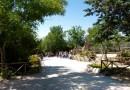 Al Parco Zoo di Falconara ripartono le attività all'Angolo Casa Natura