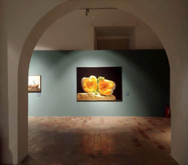 Luciano_Ventrone_Urbino_mostra 09