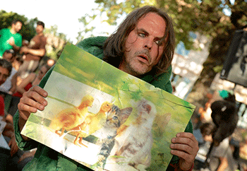 Marc Prépus - Big Caddyman - Kermestivale 2015