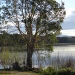 Best Tips for Traveling in Australia