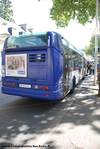 bus_vitalis