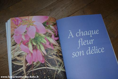 nardo_cuisine_fleurs