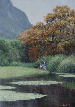 Kirstenbosch pond