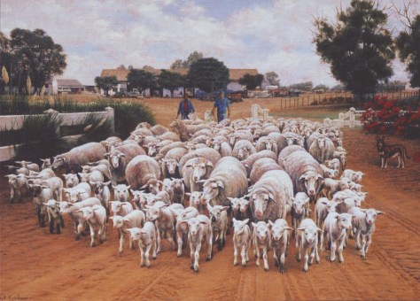 Melck Sheep Oil on canvas